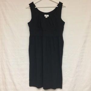 Ann Taylor Loft Dress NWT